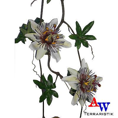 Künstliche Passionsblume Girlande mit vier weißen Blüten - ca. 175cm