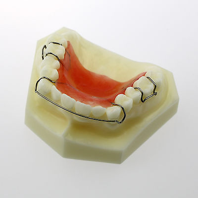 New Dental Model Hawley Retainer Model 3007 01