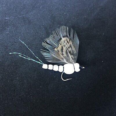 BH Caddis Pupa Chart #12 One Dozen Premium Big Y Fly Co Trout Fishing Flies