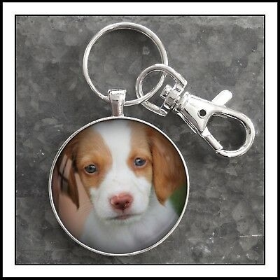 Brittany Spaniel Puppy Dog Hunting Bird Dog Photo Keychain Gift