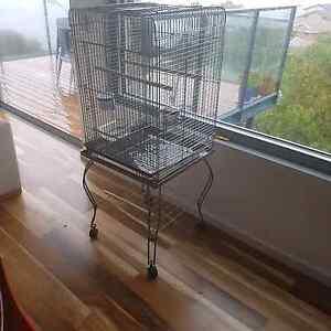 Large indoor Bird cage Sandy Bay Hobart City Preview