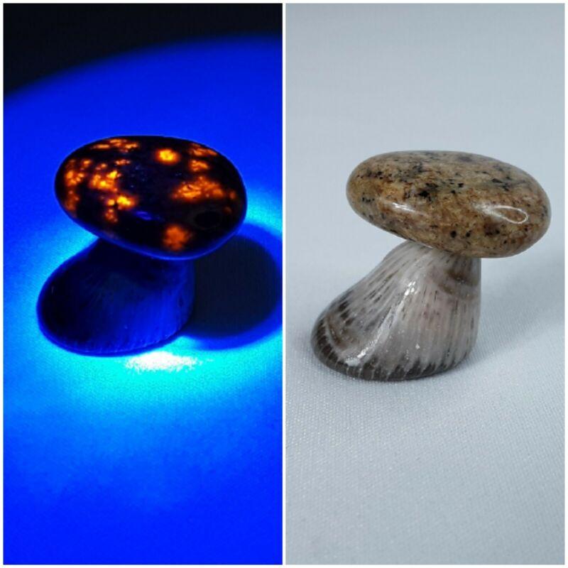 Michigan Fluorescent Sodalite Yooper Night Light Mushroom Fairy Garden Art Rock