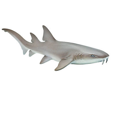 Nurse Shark Sea Life Figure Safari Ltd New Toys Educational Figurine