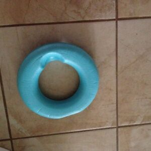 Toddler's potty seat