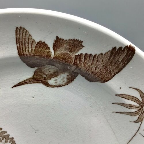 5 pc. Antique brown transferware cups saucers and plate..Birds and Begonias