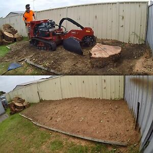 South Coast Stump Grinding and small tree removal Corrimal Wollongong Area Preview
