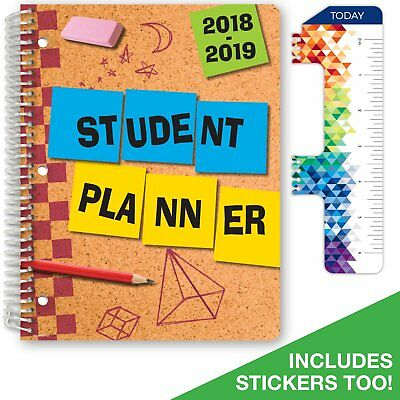 Dated Elementary Planner For Academic Year 2018-2019 Matrix Style - 8.5x11
