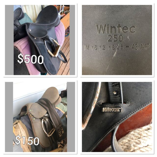 Orted Horse Gear Saddles Rugs