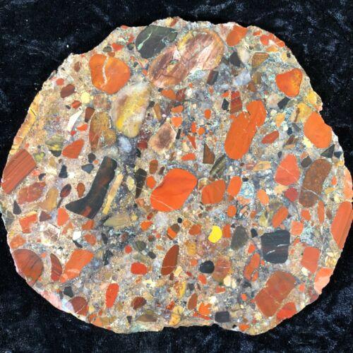 "Polished Natural Pudding Stone Conglomerate 6.5""x6"" Petrified Geology India"