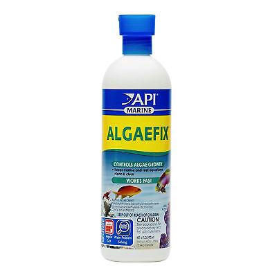 Algae Fix Marine (API AlgaeFix 16 oz   Keeps Marine and Reef Aquariums Clean and Clear for Fish )