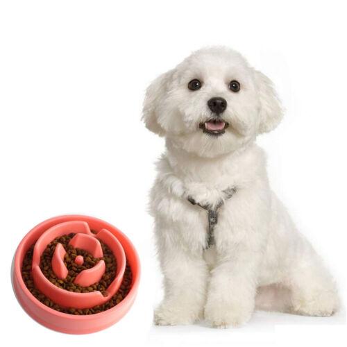 Size S Slo Bowl Pet Dog Cat Interactive Slow Food Feeder Healthy Gulp Feed Dish