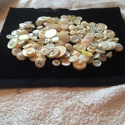 Great  200 Pcs Mixed Lot Of Vintage New Buttons All Type  Size  Whites Great Mix
