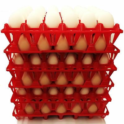 24 Rite Farm Products 30 Egg Poly Chicken Trays Shipping Carton Poultry Flat