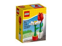 Flower Display LEGO Seasonal Neu /& OVP Blumenpracht 40187 Valentine