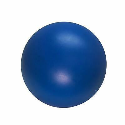 Virtually Indestructible Best Ball for Dogs 10-inch Hard Plastic
