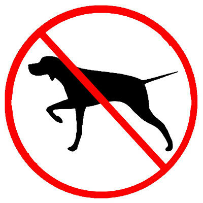 No Bird Dog, sticker S-54