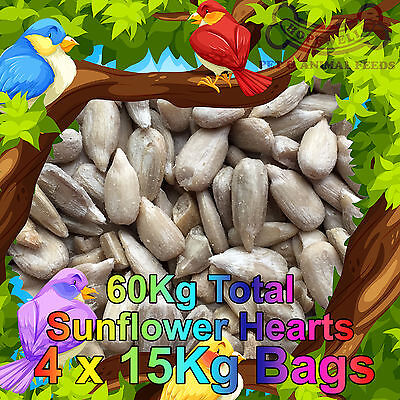 60KG (4x15Kg) Sunflower Hearts Bakery Grade Dehulled Kernels for Wild Bird Food