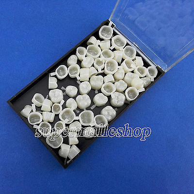 Dental Temporary Crown Material For Molar Posterior Teeth 140pcs Assorted