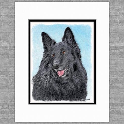 Belgian Sheepdog Dog Original Art Print 8x10 Matted to 11x14