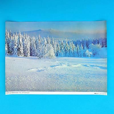 DDR Plakat Poster 642 | Blick zum Sachsenstein | 57 x 40 cm Original DEWAG 1988