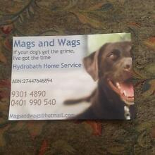 FOR SALE $15,000 Mags & Wags Mobile Hydrobath Service Joondalup Joondalup Area Preview