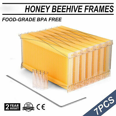 7pcs Auto Honey Beehive Frames Kit Beekeeping Honey Raw Bee Hive Harvesting Usa