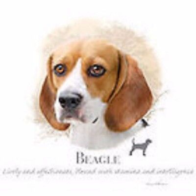 - Beagle Hood Sweatshirt Pick Your Size Medium- 5 X Large