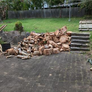 Free firewood / wood for turning into tables/ furniture Warriewood Pittwater Area Preview
