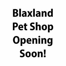 Blaxland Pet Shop Opening Soon! Blaxland Blue Mountains Preview