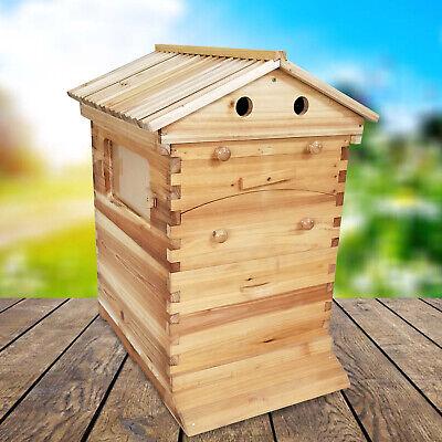 7pcs Hot Honey Hive Beehive Frames Comb Beekeeping Brood Beehive Wooden Box New
