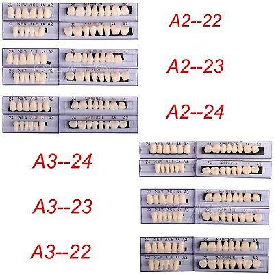 Dental Acrylic Resin Teeth Denture Full Set Teeth Upper Lower Shade 22-24 A2-a3