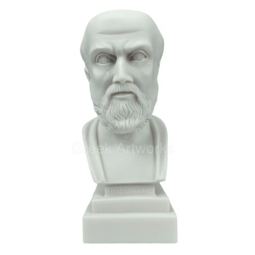 Hippocrates Father of Medicine Physician Bust Head Sculpture Cast Marble