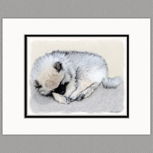 Keeshond Sleeping Puppy Original Art Print 8x10 Matted to 11x14