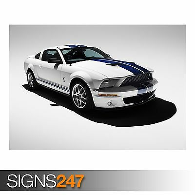 (2007 FORD SHELBY GT500 (AB902) CAR POSTER - Photo Poster Print Art * All Sizes)