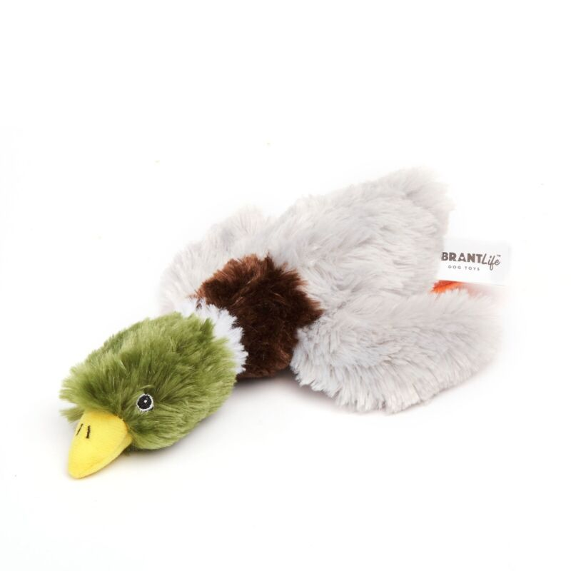 Vibrant Life Cozy Buddy Squeaky Mallard Duck Dog Toy, Chew Level 3