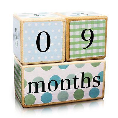 LovelySprouts Milestone Age Blocks   Solid Wood   Baby Age Photo Blocks  