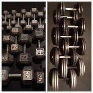 Dumbbells from 10-75lbs with 3 tier storage rack