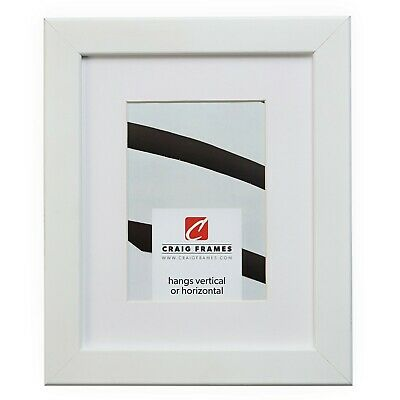 Craig Frames 26267 12x12 White Picture Frame Matted to Displ