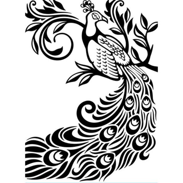 Peacock Darice Embossing Folder for Cardmaking, Scrapbooking, etc