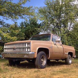 Southern 1981 Chevrolet C10 Project