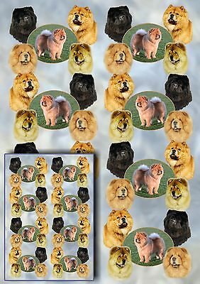 Chow Chow Dog Gift Wrapping Paper By Starprint