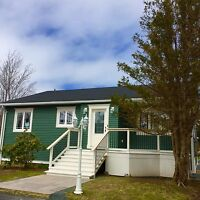 Beautiful Home For Sale In Manuels, CBS