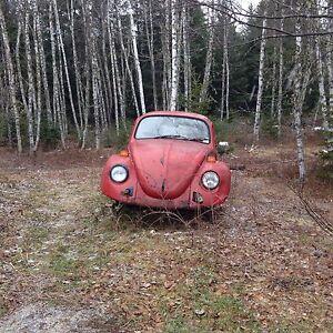 3 Classic VW bugs