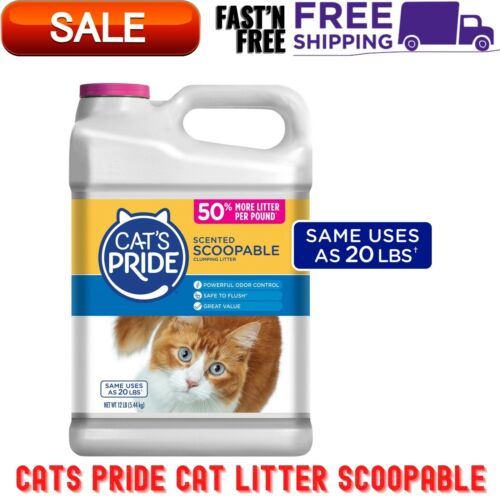 Cat Litter Scoopable, Scented Lightweight Clumping Litter, Flushable, 12 Lbs