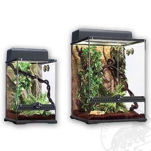 Terrarium Set Regenwald Exo Terra Rainforest S