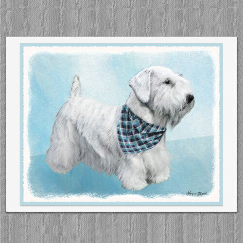 6 Sealyham Terrier Dog Blank Art Note Greeting Cards