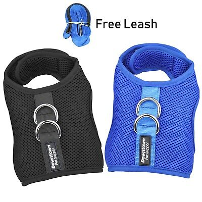 Downtown Pet Supply Best Cat Vest Harness Leash Combo Added Safety