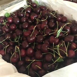 Local jumbo sweet cherry 20lbs box