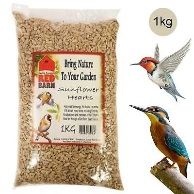 Red Barn Premium Wild Bird Sunflower Hearts Seed│Eleven Quality & Cleaned│1Kg