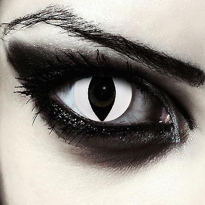 Weiße farbige Katzen Augen Kontaktlinsen für Halloween Kostüm: White (Weiße Augen Kontakte Für Halloween)